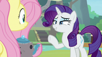 Rarity asks Fluttershy to run her shop S8E4