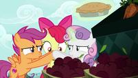 Scootaloo and Sweetie Belle shush Apple Bloom S9E23