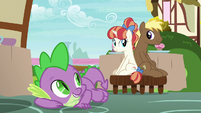 Spike helps Coco Crusoe and Rainbow Stars get along S7E15
