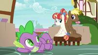 Spike helps Coco Crusoe and Rainbow Stars get along S7E15