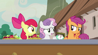 "Sweetie Belle ""how many spies do you know?"" S7E8"