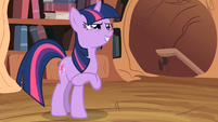 Twilight Sparkle -Then it looks like- S2E03