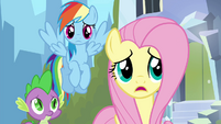 "Fluttershy ""what's wrong, Twilight?"" S4E25"