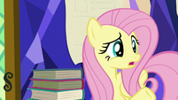 Fluttershy --that happened five minutes ago-- S5E23
