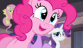 "Pinkie Pie ""it's a Tree-chest-castle-map!"" S5E1.png"