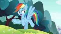 "Rainbow Dash ""you already know me"" S6E6"