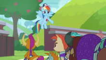 Rainbow Dash but all of you do S9E15