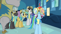 Rainbow Dash frowning S3E7