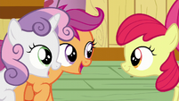 Scootaloo and Sweetie Belle --Sure am!-- S6E4