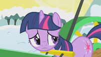 Twilight worried S1E11