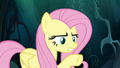 """Fluttershy """"do exactly what I say"""" S6E11.png"""