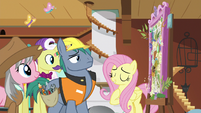 Fluttershy explains her vision to the experts S7E5
