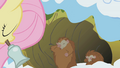 Fluttershy waking up critters S1E11.png