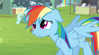 Rainbow Dash -hold on a sec- S4E22
