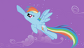 Rainbow Dash chasing about Trixie S1E06.png