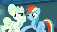 Rainbow Dash lightly punches Vapor Trail S6E24