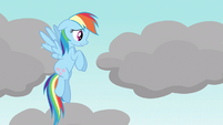 Rainbow Dash now or never S3E13
