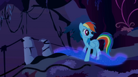 Rainbow Dash sees Nightmare Moon's trail S1E02
