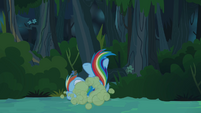 Rainbow Dash tossed aside S4E04