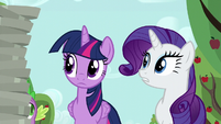 Rarity --that's a lot of empty pie plates-- S6E10
