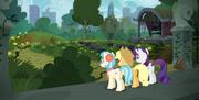 S05E16 Coco, Applejack i Rarity przed zaniedbanym parkiem