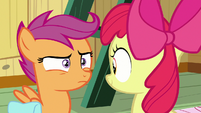 Scootaloo looks confused at Apple Bloom S9E22