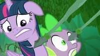 Spears being pointed even closer to Twilight and Spike S5E26