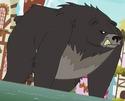 Thorax as black bear ID S7E15