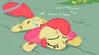 Tired Apple Bloom S2E6
