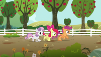 Apple Bloom sees Gabby straight ahead S6E19