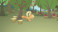 Applejack bucking a tree S1E04