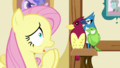 """Fluttershy """"if anything scary"""" S5E21.png"""