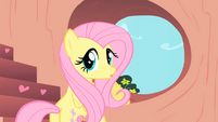 Fluttershy Hearth shape S1E16