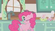 Pinkie Pie balanciert ein Backblech auf dem Kopf S1E12