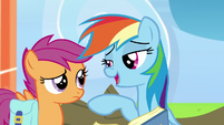"Rainbow Dash ""in the senior competitive circuit"" S7E7"