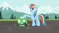 S02E07 Rainbow Dash ze swoim nowym pupilem