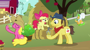 S07E14 Apple Bloom nalewa cydr fanowi