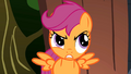 Scootaloo Annoyed S1E18.png