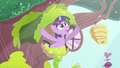 """Twilight """"morning in Ponyville shimmers"""" S03E13.png"""