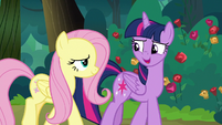 "Twilight ""right next to the Elements"" S8E13"