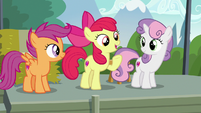 "Apple Bloom ""we found the first activity of the day"" S7E21"