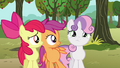 Apple Bloom and Scootaloo looks at Sweetie Belle S3E04.png