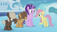 Fluttershy --sure could use the practice-- S5E25
