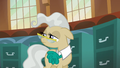 Mayor Mare looking S5E19.png