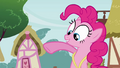 Pinkie Pie 'And then I can be back in time to see' S3E3.png