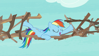 "Rainbow Dash ""not to disagree"" S8E9"