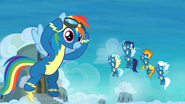 Rainbow Dash i Wonderbolts