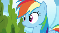 Rainbow Dash looks to her right S6E7