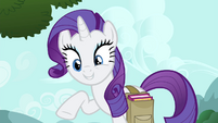 Rarity -what matters is what you think- S4E23