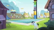 Ponyville-Schwimmwettkampf
